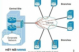 Giới thiệu Dynamic Multipoint Virtual Private Network (DMVPN)